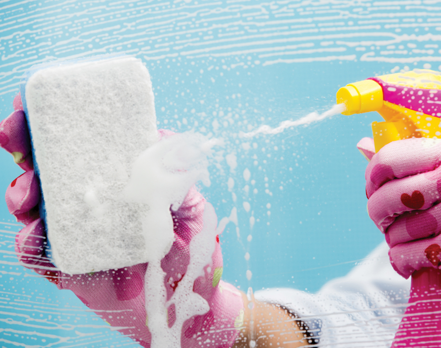 From being a luxury to becoming a must-have, cleaning franchises have scrubbed up nicely