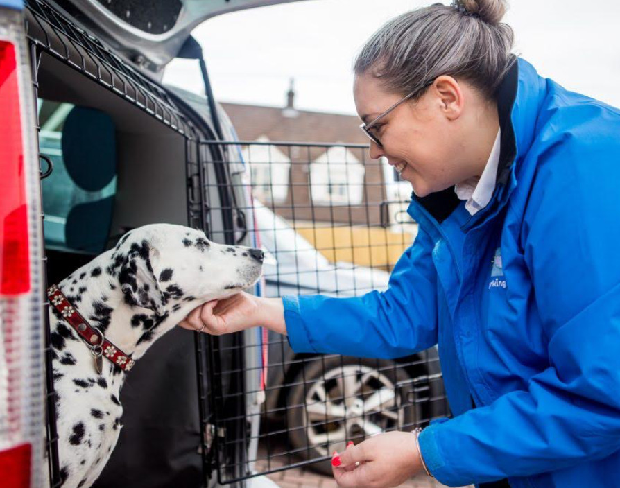 'Working in the pet care industry is good for your physical and mental well-being'